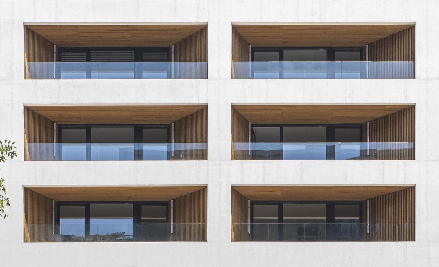 Ilot G / Les Loges de Saone - Lyon confluence : détail façade - Z Architecture
